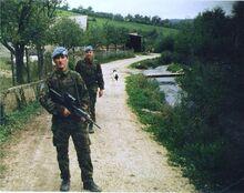 Irish Troops in Northern Ireland