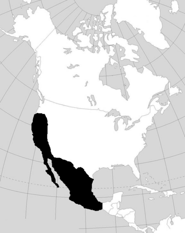 File:Chinesecolonies.PNG