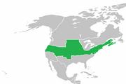 QI 1920 United States