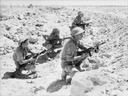 B troops in Palestine