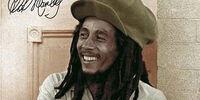 Robert Marley (PS-1)