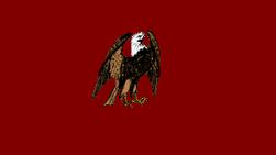PolotskFlag