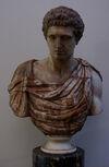 Palazzo Vecchio Marble Bust