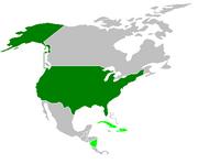 America1917