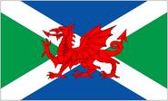 Celtic Flag