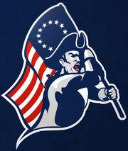 Boston Patriots (No AFL)