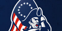 Boston Patriots (No AFL)