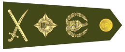 File:General of the Zimbabwe National Army.png