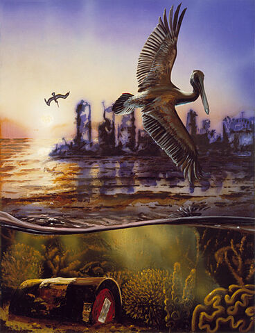 File:5 pelican.jpg