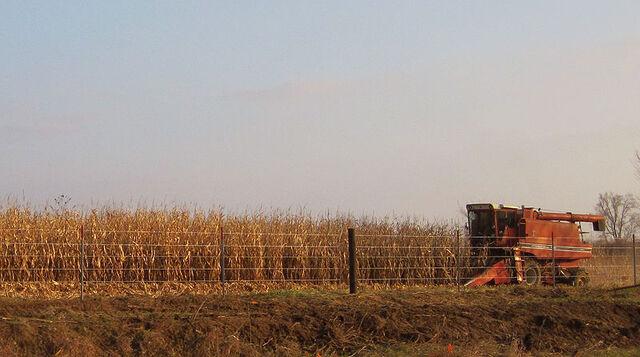 File:800px-Iowa harvest 2009.jpg
