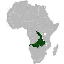 EastKongo Africa NW