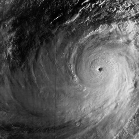 File:Typhoon tip peak.jpg