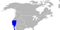 1828 California