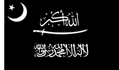 File:MLA FLAG.png