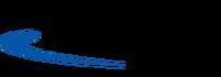 TSInfoSys logo