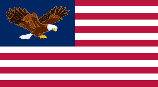File:Us freedom flag.png