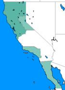 NotLAH California 1933