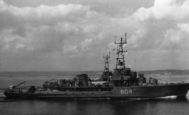 File:T43 class minesweeper.jpg