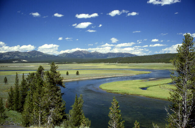 File:Yellowstone River in Hayden Valley.jpg