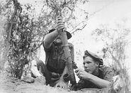 2 inch mortar