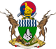 Zimbabwe CoA (Shattered Into Pieces)