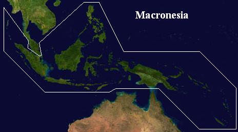 File:Macronesia (VegWorld).JPG