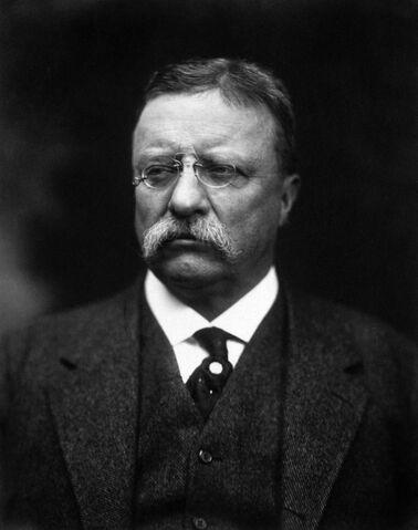 File:T Roosevelt.jpg