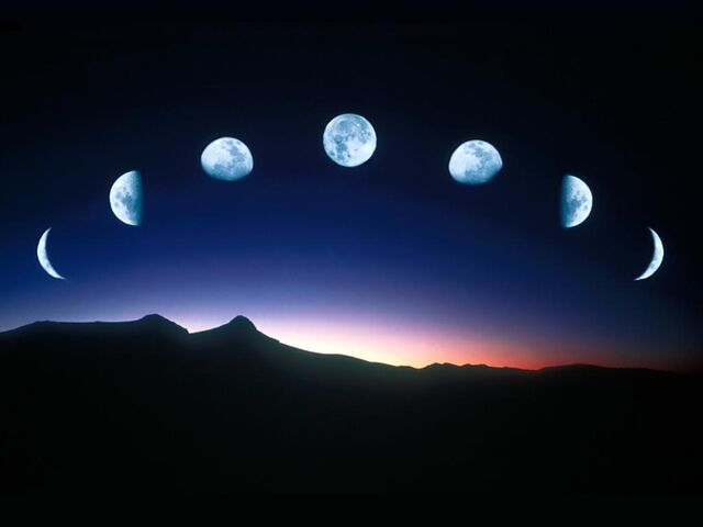 File:Phases of the Moon.jpg