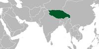 Tibet (Cherry, Plum, and Chrysanthemum)