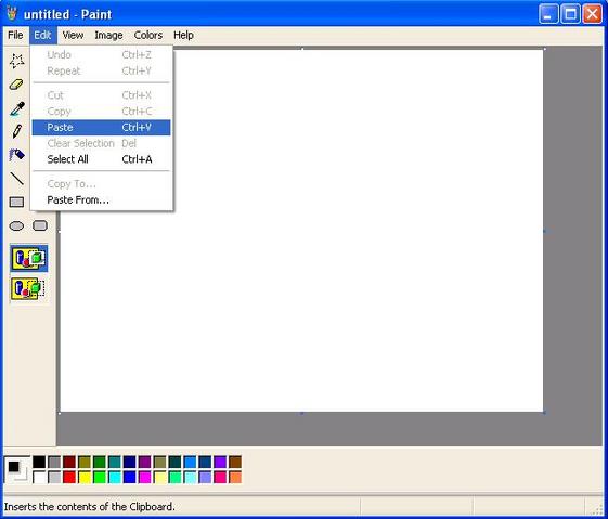 File:Paint.png