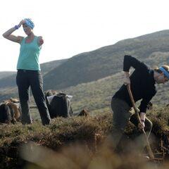 Adam &amp; Bethany doing the <i>Pony Up</i> <a href=