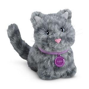 Praline cat
