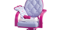 Salon Chair and Wrap Set
