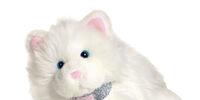 Isabelle's Kitten