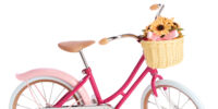 Samantha's Bicycle