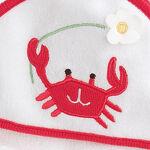 SeashoreCrab
