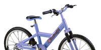Trail Bike I