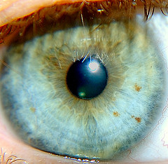 File:Spoiler Eye.jpg