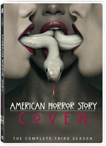 File:AHSCoven DVD Spine.jpg