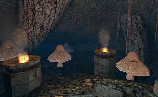 File:Fungiferous Flora - Killer Mushrooms.png