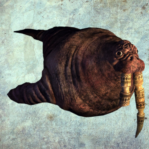 File:Walrus render.png