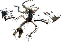 Jabberwock skeleton