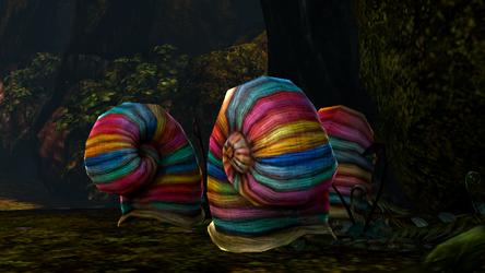 File:Snail shells.png