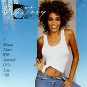 Whitney Houston I Wanna Dance With Somebody cover