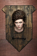 1907.2 brittany-brown