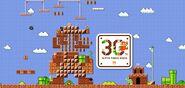 Mario-maker-30