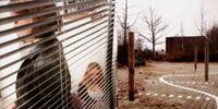 Amok - Kinder der Kälte: Über die Wurzeln von Wut und Haß