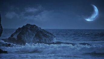 Peaceful Golden Sea