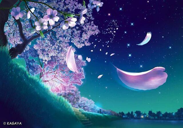 File:SakuraBlossomTree1.jpg