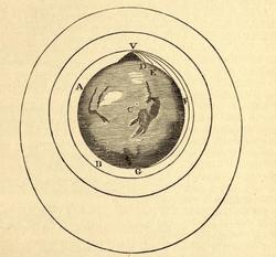 Newton's Dunspar
